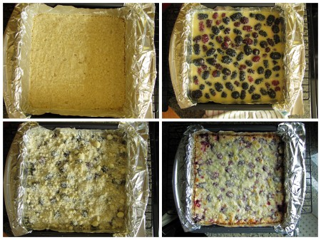 Blackberry bars 2