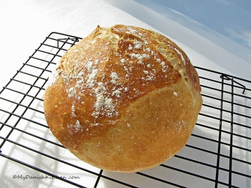 Worlds Best Bread aka No Knead Bread